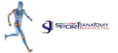 Sport and Anatomy, Sponsor Viareggio Cup
